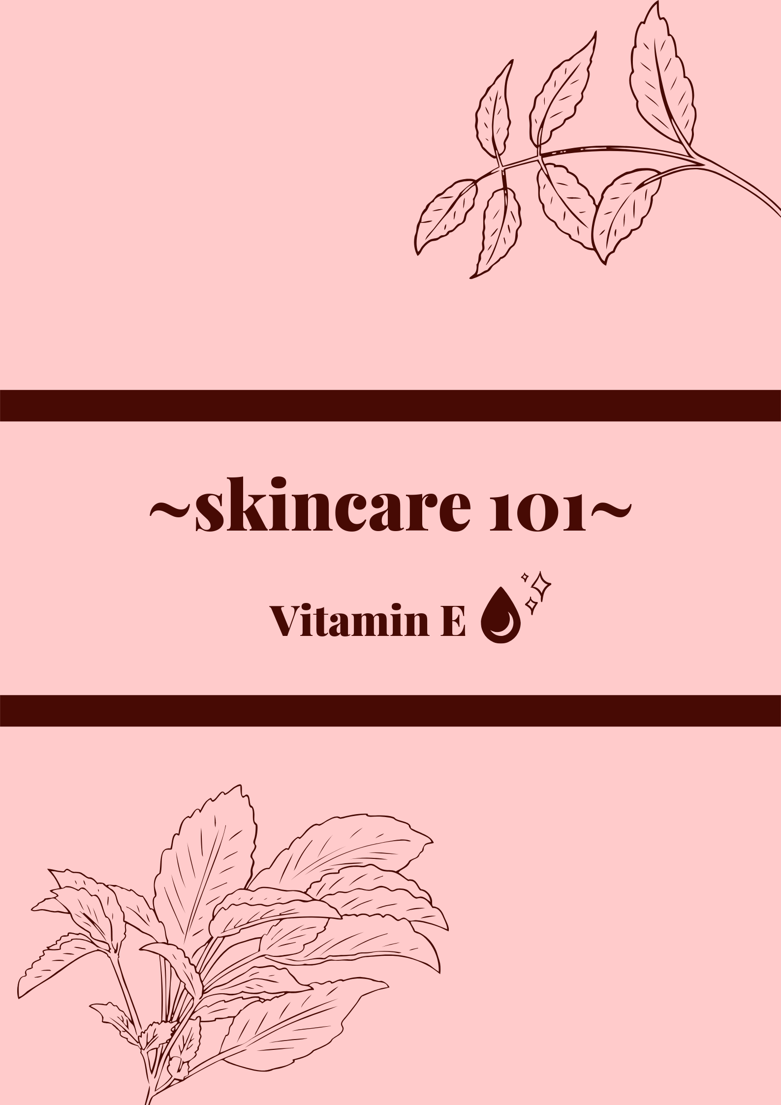 A complete guide to using Vitamin E for your skin