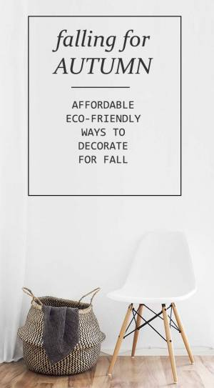 Falling for autumn | ECO-FRIENDLY WAYS TO  DECORATE ON A BUDGET